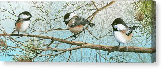 Troublesome Trio Canvas Print
