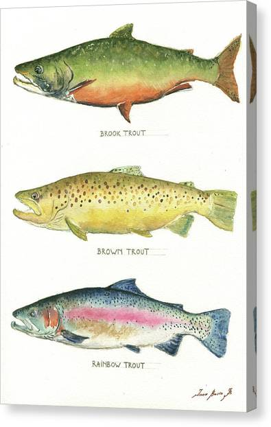 Fishing Canvas Print - Trout Species by Juan Bosco