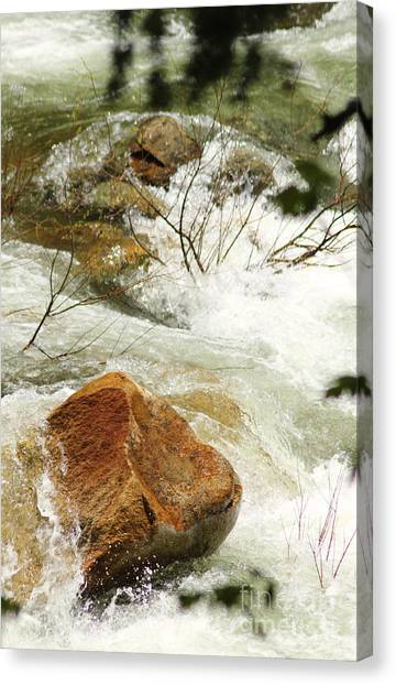 Truckey River Canvas Print