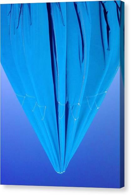 True Blue Canvas Print by Anna Villarreal Garbis