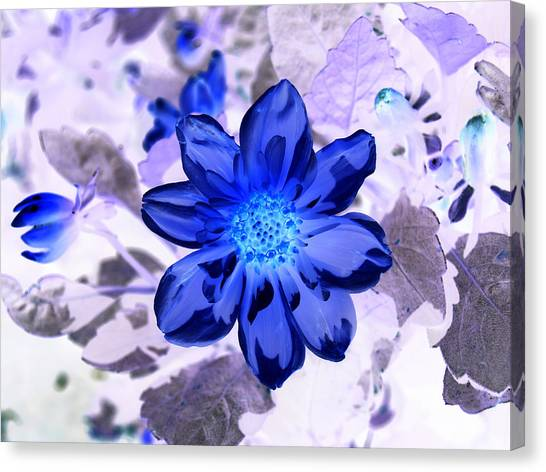 True Blue Canvas Print by James Granberry