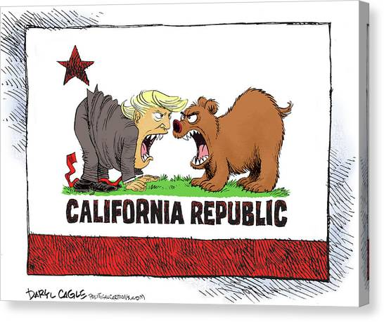Canvas Print featuring the drawing Trump And California Face Off by Daryl Cagle