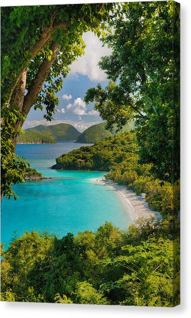 Trunk Bay Canvas Print