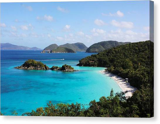 Trunk Bay, St. John Canvas Print