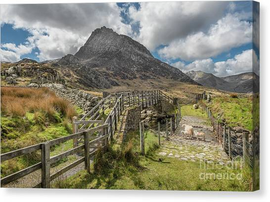Tryfan Mountain Canvas Print - Tryfan And The Ogwen Valley by Adrian Evans