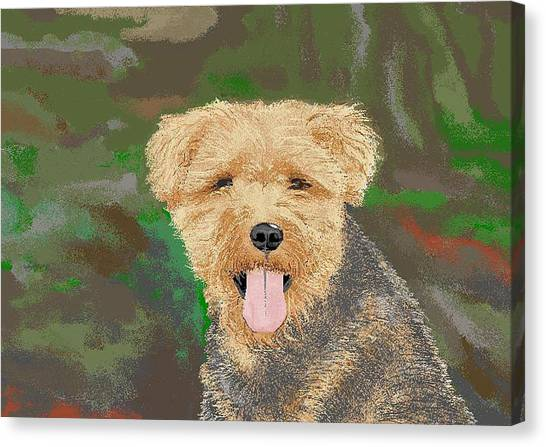Tucker The Welsh Terror Canvas Print by Carole Boyd
