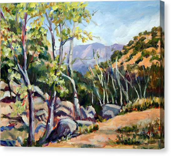 Tucson I Canvas Print