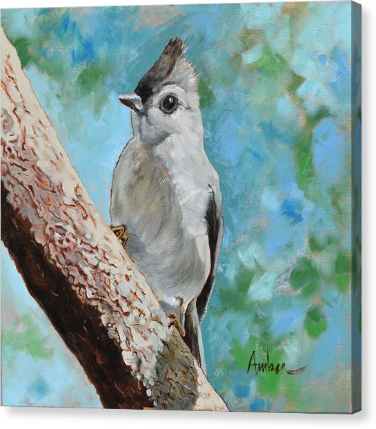 Titmouse Canvas Print - Tufted Titmouse #1 by Amber Foote