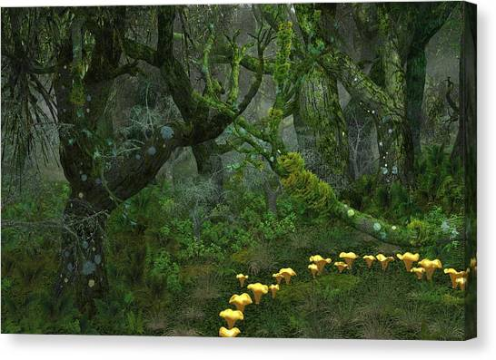Tulgey Wood Canvas Print by Diana Morningstar