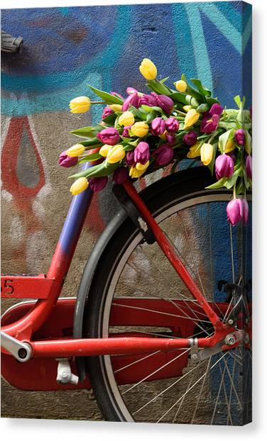 Tulip Bike Canvas Print