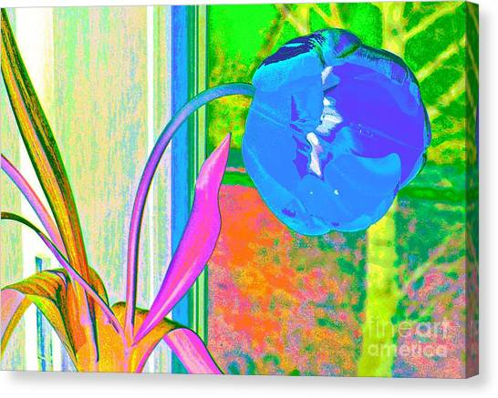 Tulip Dream In The Morning Canvas Print