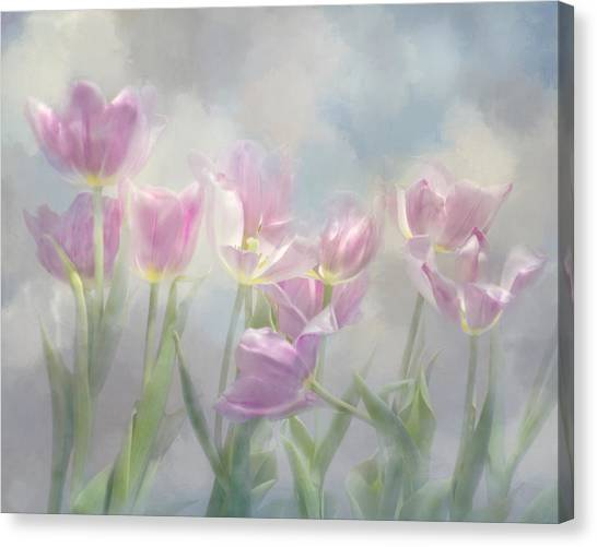 Tulip Dreams Canvas Print