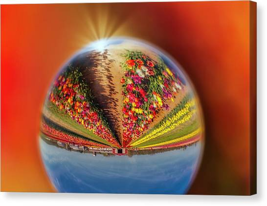 Canvas Print featuring the photograph Tulip Farm Reflections And Refractions by Susan Candelario