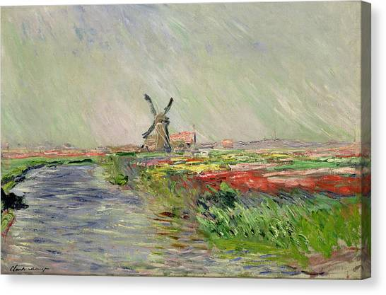 Mills Canvas Print - Tulip Field In Holland by Claude Monet