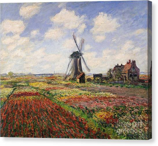 Tulips Canvas Print - Tulip Fields With The Rijnsburg Windmill by Claude Monet