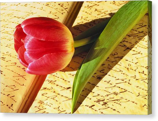 Tulip On An Open Antique Book Canvas Print by Tony Ramos
