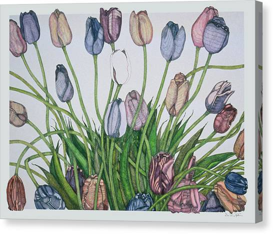 Tulip Serenade  Canvas Print
