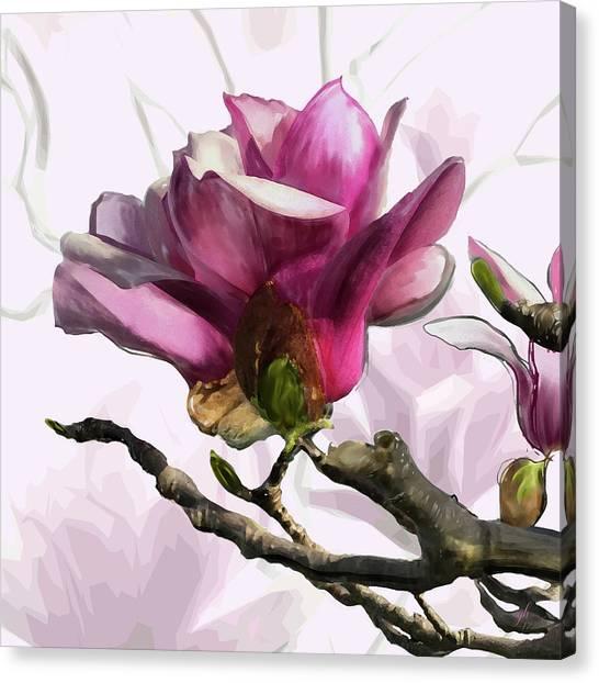 Tulip Trees Canvas Print