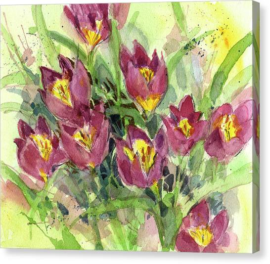 Tulipa Canvas Print