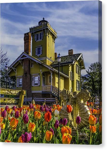 Tulips Af Hereford Light Canvas Print
