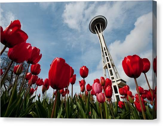 Tulips In Seattle H081 Canvas Print by Yoshiki Nakamura