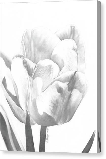 Tulips No. 1 Canvas Print