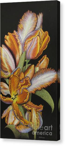 Tulips Of Fire Canvas Print