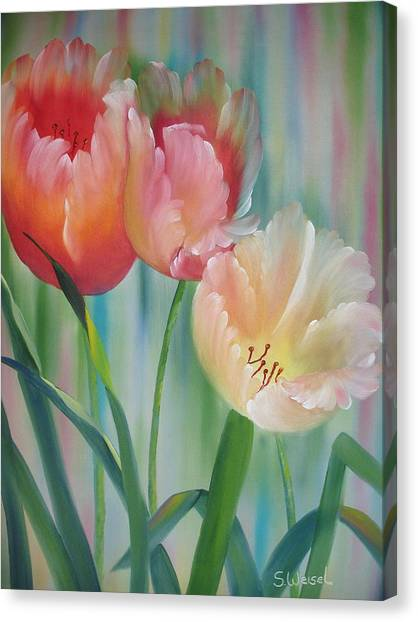 Tulips Canvas Print by Sherry Winkler