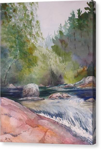 Tumbling Waters  Canvas Print by Debbie Homewood