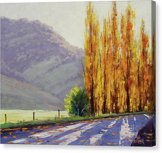 Tumut Poplars Canvas Print by Graham Gercken