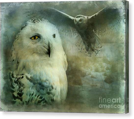 Tundra Traveler 2015 Canvas Print