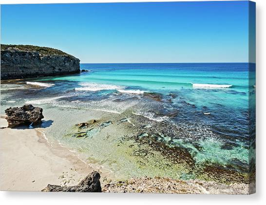 Pennington Bay Canvas Print - Turquoise Paradise by Catherine Reading
