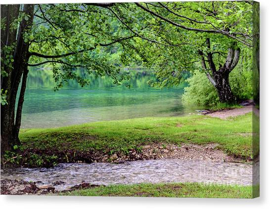 Turquoise Zen - Plitvice Lakes National Park, Croatia Canvas Print