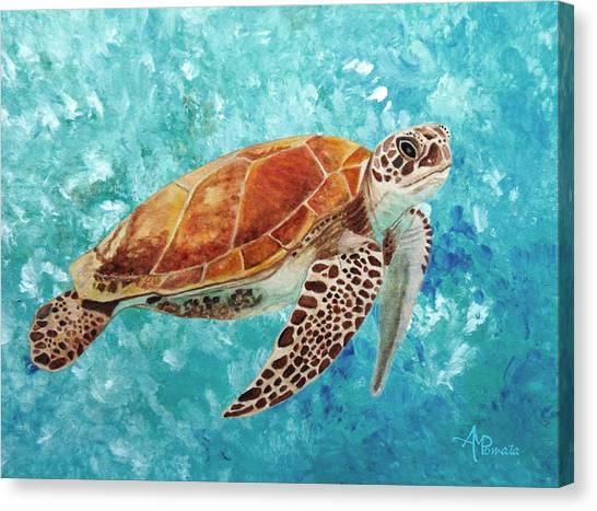 Turtle Swimming Canvas Print