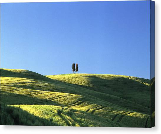 Tuscan Evening Canvas Print by Michael Hudson