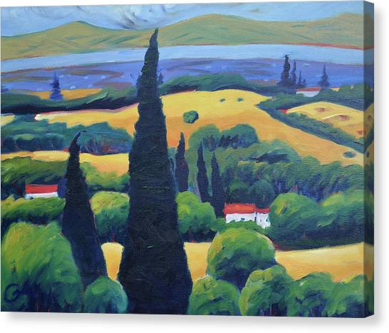 California Canvas Print - Tuscan Pines And South Bay by Gary Coleman