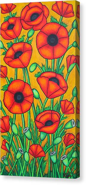 Tuscan Poppies Canvas Print
