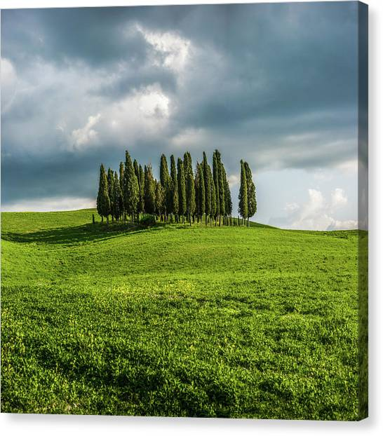 Tuscan Wonderland - Val D Orcia Canvas Print