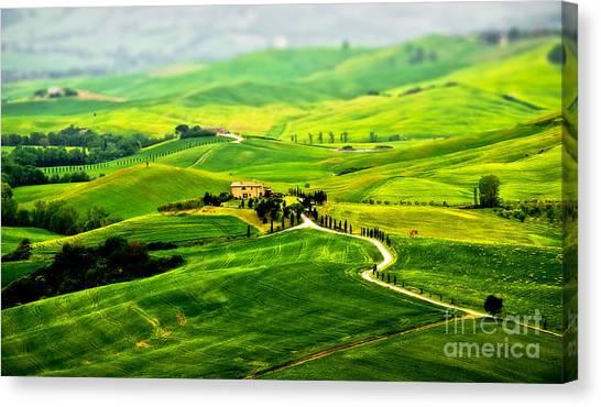 Tuscany S Green Scapes Canvas Print by Alessandro Giorgi Art Photography