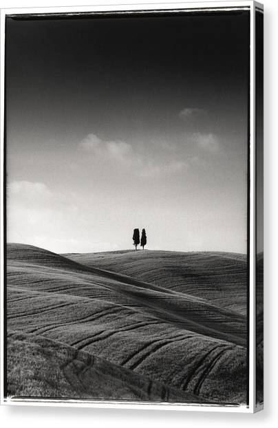 Tuscany Twin Cypresses Canvas Print by Michael Hudson