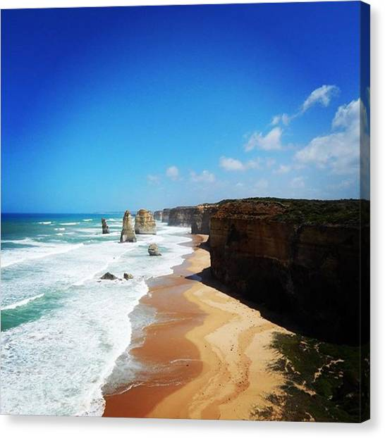 Ocean Life Canvas Print - Twelve Apostels  by Earth Dreamers