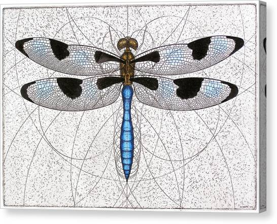 Twelve Spotted Skimmer Canvas Print