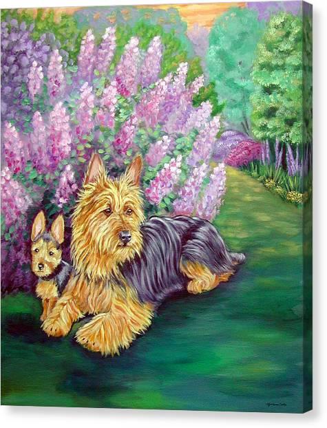 Lilac Bush Canvas Print - Twilight - Australian Terrier by Lyn Cook