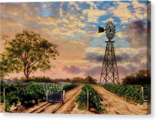Twilight At The Vineyard Canvas Print