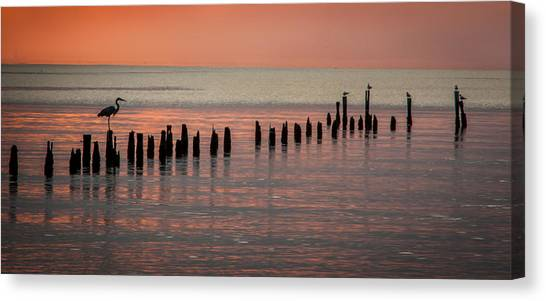Twilight Colors Canvas Print