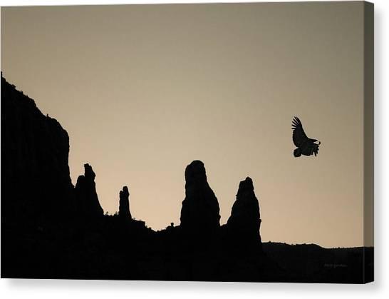 Condors Canvas Print - Twilight Flight Toned by David Gordon