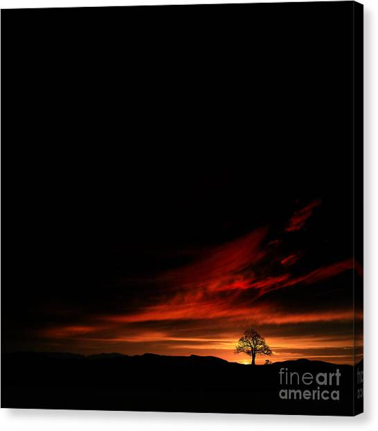 Twilight Glow Canvas Print