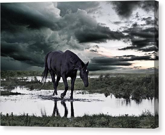 Flooding Canvas Print - Twilight Of The Gods by Joachim G Pinkawa
