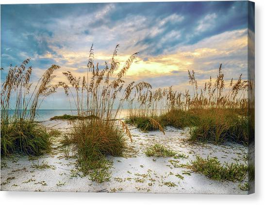 Canvas Print featuring the photograph Twilight Sea Oats by Steven Sparks