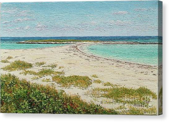 Twin Cove Canvas Print